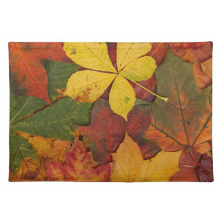 Brightly Colored Fall Leaves Place Mats