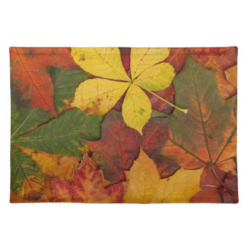 Brightly Colored Fall Leaves Place Mat