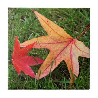 Brightly Colorful Maple Leaf Ceramic Tiles