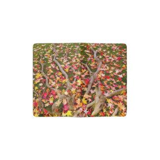 Brightly Colorful Maple Leaf Pocket Moleskine Notebook
