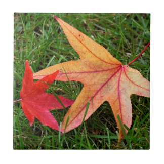 Brightly Colorful Maple Leaf Tile