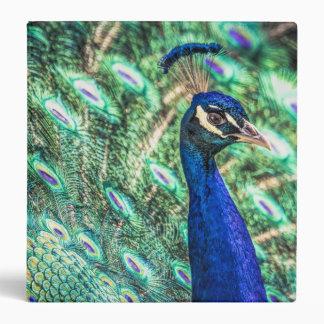 Brilliance in Blue &Green Peacock Binder