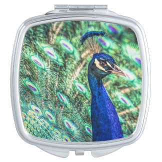 Brilliance in Blue &Green Peacock Mirror Compact Mirrors