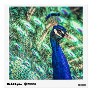 Brilliance in Blue &Green Peacock Wall Decal