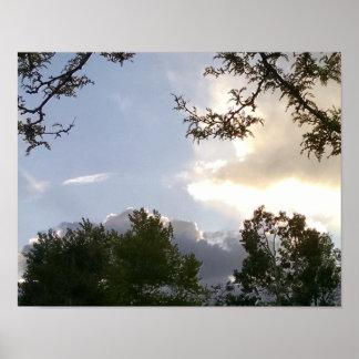 Brilliant, backlit clouds, framed by trees poster