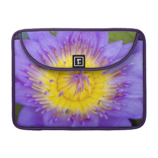 Brilliant Blue Water Lily Bloom photo MacBook Pro Sleeves
