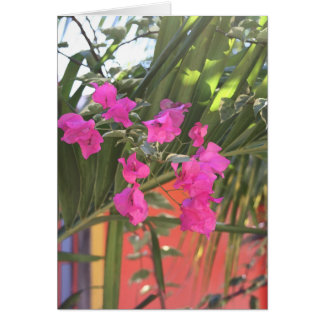 Brilliant Bougainvillea Card