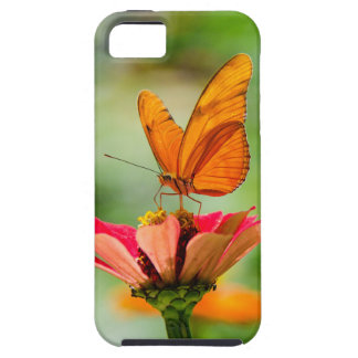 Brilliant Butterfly on Bright Orange Gerber Daisy Case For The iPhone 5