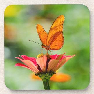 Brilliant Butterfly on Bright Orange Gerber Daisy Coaster