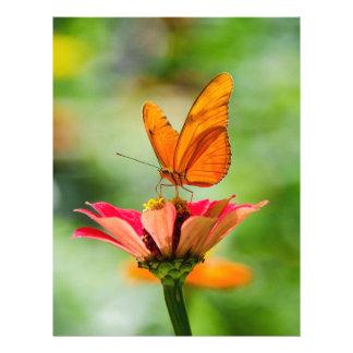 Brilliant Butterfly on Bright Orange Gerber Daisy Custom Letterhead