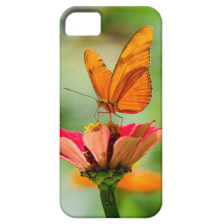 Brilliant Butterfly on Bright Orange Gerber Daisy iPhone 5 Cover
