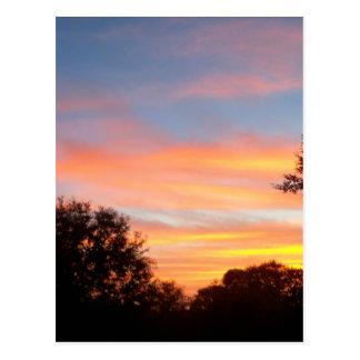 brilliant colored Sunset Oct sky Postcard