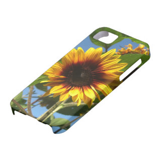 Brilliant Sunflower iPhone Case