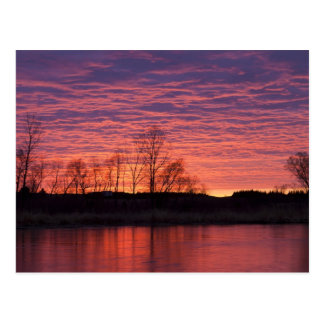 Brilliant sunset reflects into the Calamus River Postcard