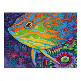 Brilliant Tropical Fish I Postcard