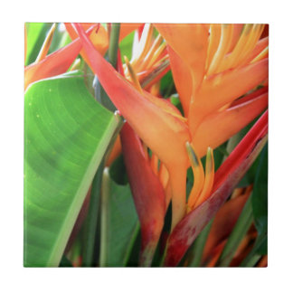 Brilliant Tropical Heliconia Florals Tile