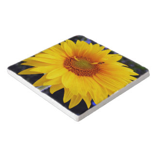 Brilliant Yellow Sunflower Trivet
