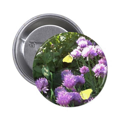 Brimstone Butterflies in the Herb Garden Pinback Buttons