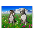 Brindle & Blue Staffordshire & Pit Bull Dogs Card
