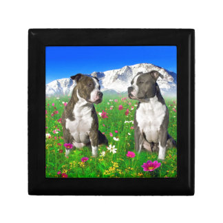 Brindle & Blue Staffordshire & Pit Bull Dogs Jewelry Boxes