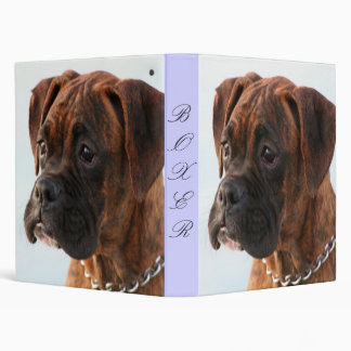 Brindle Boxer puppy binder