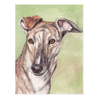 Brindle Greyhound Dog Art Postcards