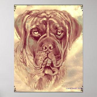 Brindle Mastiff Poster by Carol Zeock