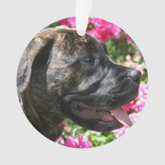Brindle Mastiff puppy Ornament