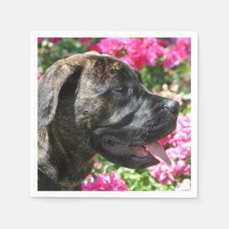 Brindle Mastiff puppy Paper Napkins