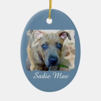 Brindle Pit Bull Puppy by Shirley Taylor Ceramic Oval Ornament