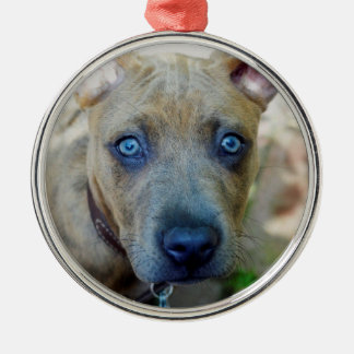 Brindle Pit Bull Puppy by Shirley Taylor Silver-Colored Round Ornament