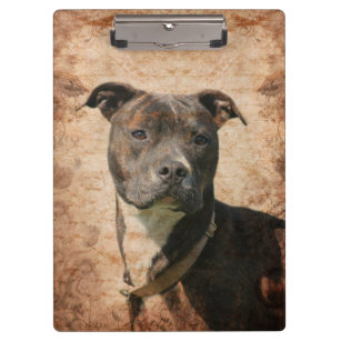 Brindle Pitbull Gifts Office & School Products | Zazzle ca