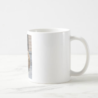 BRISBANE QUEENSLAND AUSTRALIA COFFEE MUG