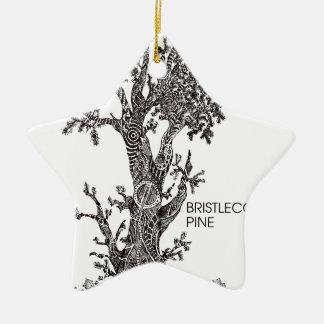 Bristlecone Pine Ceramic Star Ornament