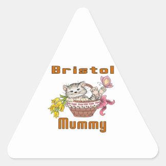 Bristol Cat Mom Triangle Sticker