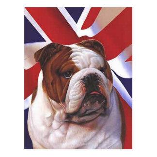 BRITISH BULLDOG POSTCARD