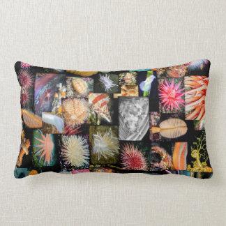 British Columbia Marine Species Collage Pillow