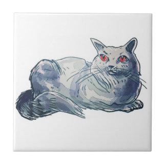 british shorthair cat cartoon style illustration tile