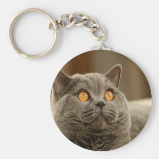 British Shorthair Cat Peace calm and joy Basic Round Button Keychain