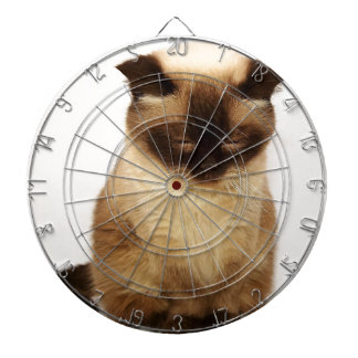 British Shorthair Cat Pet Mieze British Short Hair Dartboard