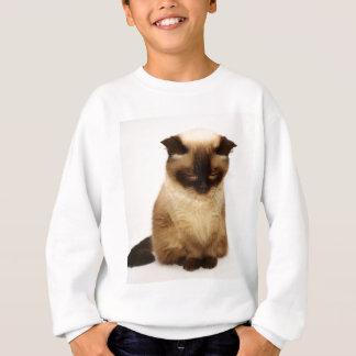 British Shorthair Cat Pet Mieze British Short Hair Sweatshirt