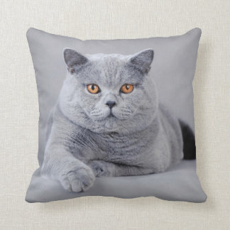 British shorthair cat throw pillow
