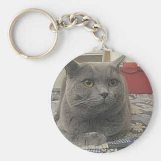 British_Shorthair_grey Basic Round Button Keychain