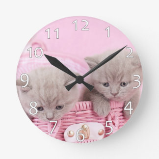 British shorthair kittens round clock
