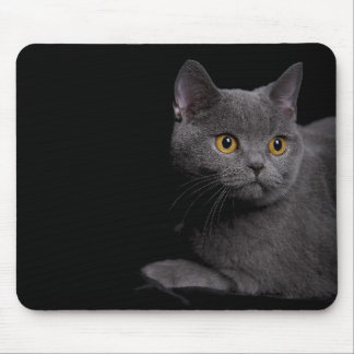 British Shorthair Mousepad