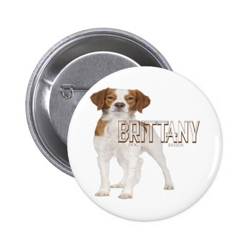 Brittany dog breeds  ブルターニュ犬の品種 pinback button