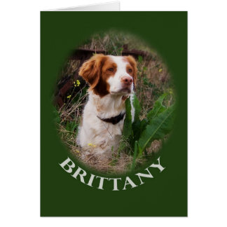 Brittany Note Card
