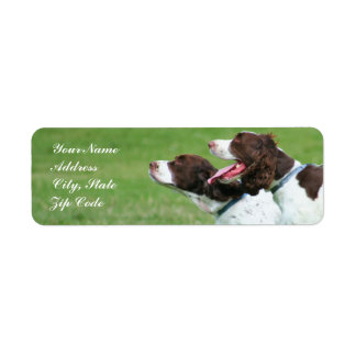 Brittany spaniel address labels