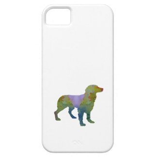 Brittany Spaniel iPhone 5 Cover