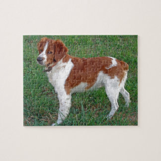 Brittany Spaniel Puzzles